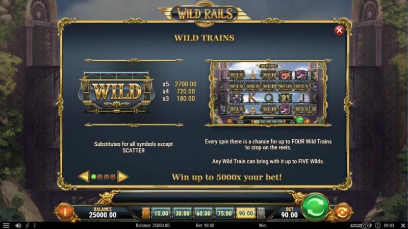 Wild Rails :: Wild Symbols Rules