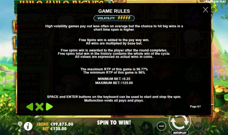 Wild Wild Riches Luck of the Irish :: General Game Rules