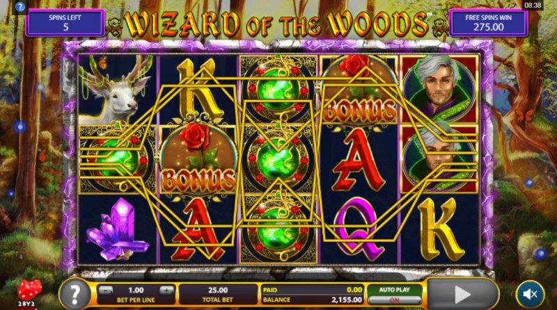 Wizard of the Woods :: Multiple winning paylines