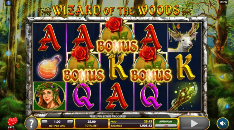 Wizard of the Woods :: Scatter symbols triggers the free spins bonus feature