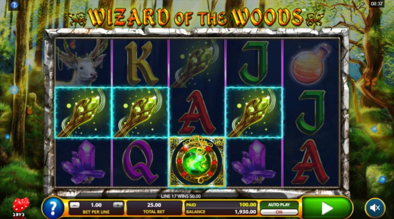 Wizard of the Woods :: A four of a kind win
